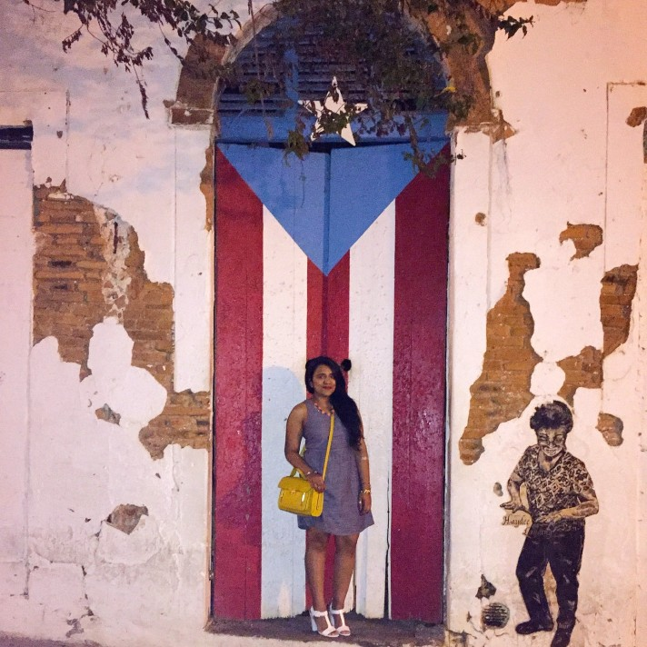 Puerto-Rico-Flag-Door